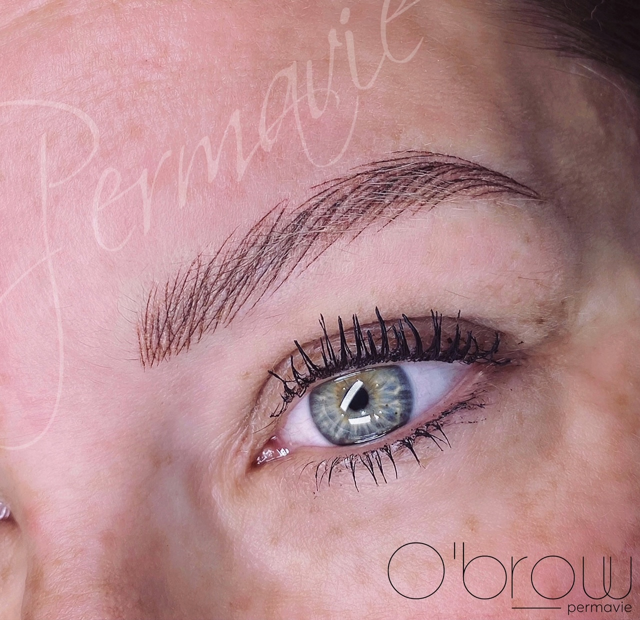 Maquillage permanent Sourcils Obrow